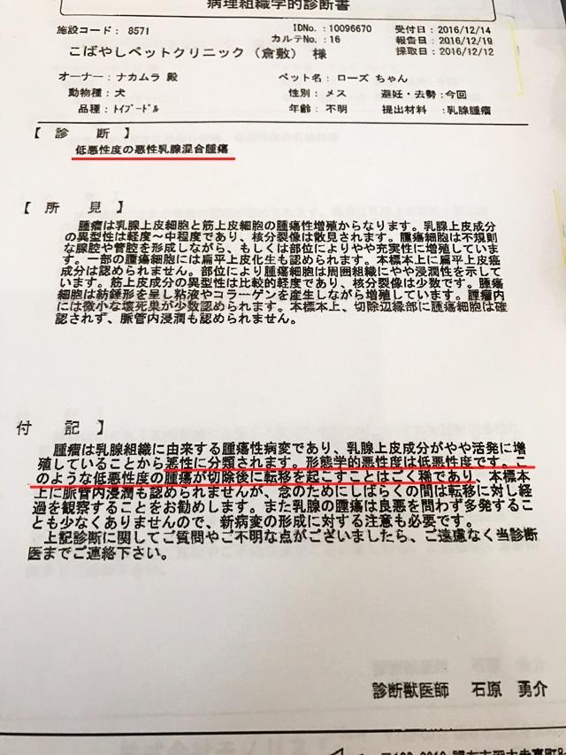 2016-12-20-1.JPG