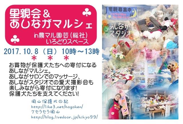 2017-10-asinaga-poster.JPG