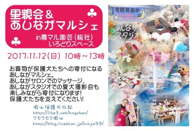 2017-11-asinaga-poster.JPG
