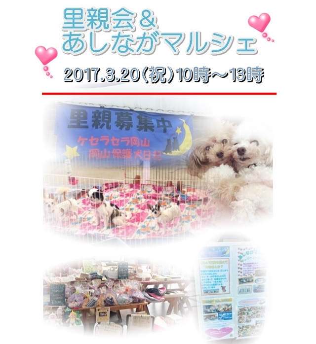 2017-3-20-asinaga-poster.JPG