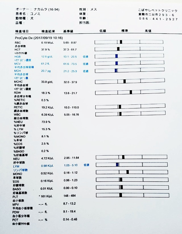 2017-9-19-1.jpg