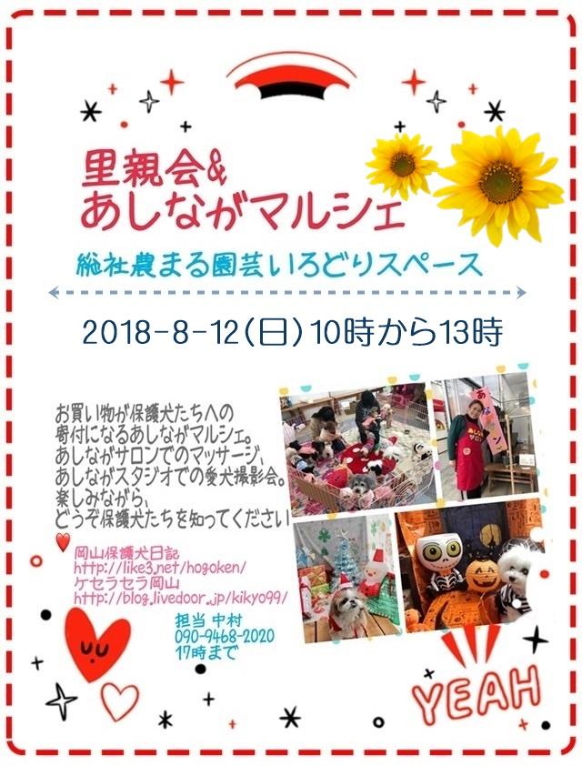 2018-8-12-ashinaga-pos.JPG